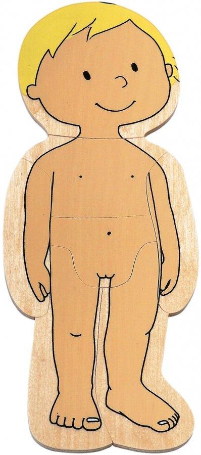 Человеческое тело для детей картинки