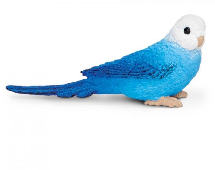 разделах: купить попугая в энгельсе условиям работы комиссиям