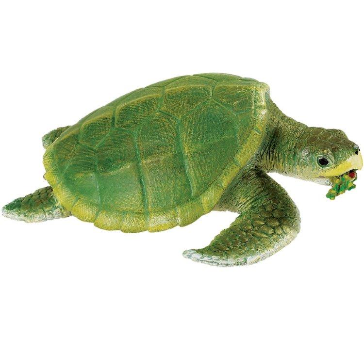 Картинки с черепахами для детей, картинки животных