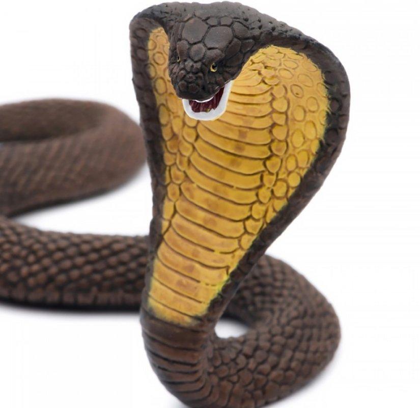 Смотреть картинки игрушек змей